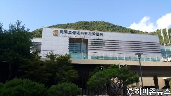 태백고생대자연사박물관.jpg
